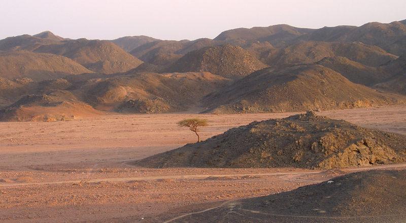 sårbart ørkenlandskap